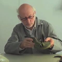 Snijbonenmolen (VIDEO)