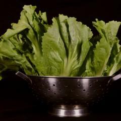 Vegetarische andijviestamppot