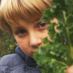 Ons Mooie Voedselboek: boerenkool (VIDEO)